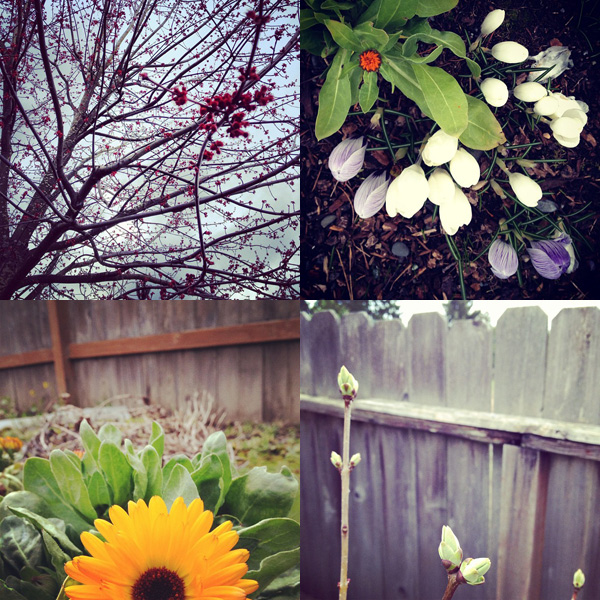 031912_spring