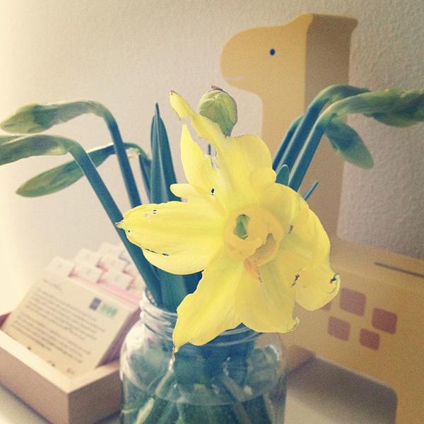One Fine Dae: spring