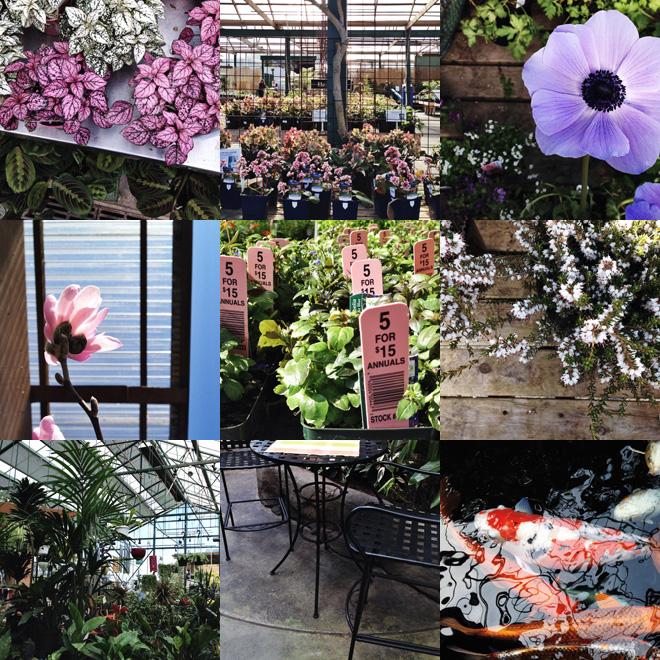 one fine dae: a trip to swansons nursery