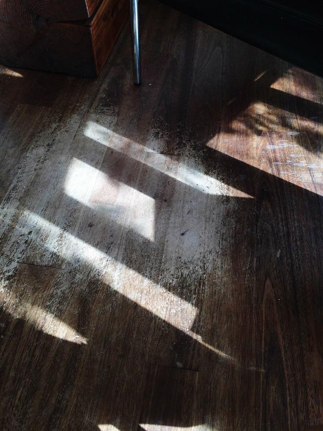 one fine dae: february sun streaks